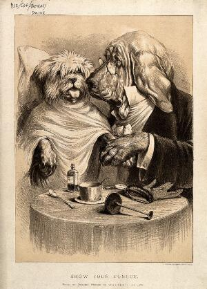 view A doctor examining his patient; represented by a bloodhound with a terrier. Lithograph after W.J. Allen.