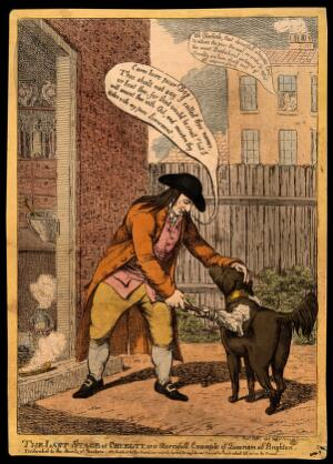 view John Glaisyer a Quaker anointing a dog with burning vitriol oil; implying a satirical attack on the Quaker movement. Coloured etching by C. Williams, 1806.
