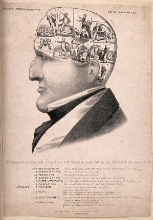 view Phrenological head of Robert Peel containing ten scenes; satirizing the Prime Minister's qualities. Lithograph attributed to J. Doyle.