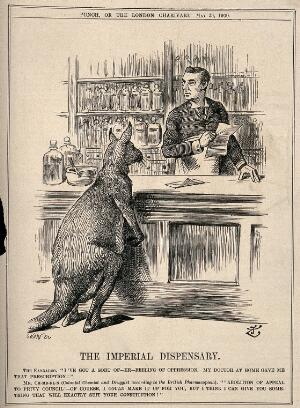 view A pharmacist making up a prescription for a kangaroo; representing Chamberlain's advocacy of the Commonwealth of Australia. Wood engraving by J. Swain after Sir J. Tenniel, 1900.