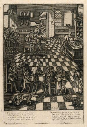 view A monkey barber's shop. Engraving after P. van der Borcht.