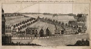 view Royal Botanic Gardens, Kew, Surrey. Line engraving.