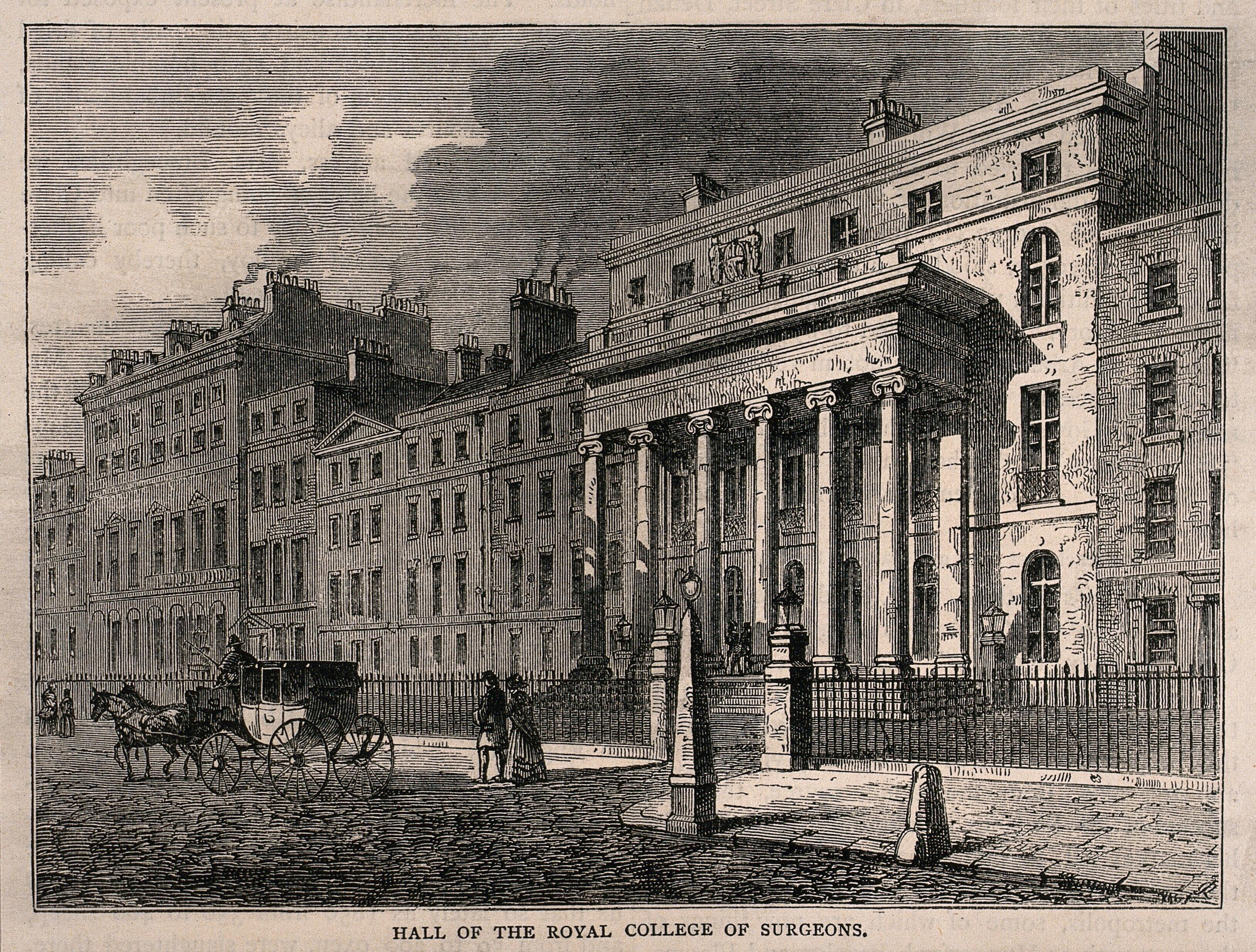 The Royal College Of Surgeons Lincolns Inn Fields London Wood