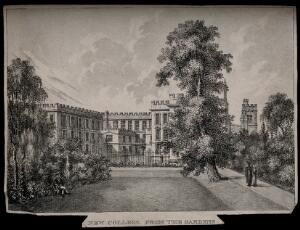 view New College, Oxford: from the gardens. Lithograph.