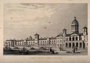 view Colney Hatch Lunatic Asylum, Southgate, Middlesex: panoramic view. Engraving.