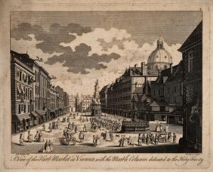 view Herb-market and Holy Trinity Column, Vienna, Austria: panoramic view. Engraving by R. Parr after J.E.F. van Ert.