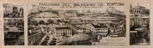 view Tortosa, Spain: panoramic view. Lithograph.