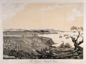 view Crimean War: aerial view of the general hospital at Scutari, Turkey. Tinted lithograph by Lady A. Blackwood.