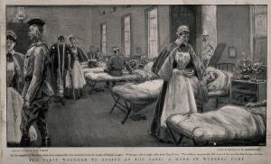view Boer War: a full ward in the Wynberg military hospital, South Africa, with nurses attending the wounded. Halftone, 1900, after P. Spence after H. Egersdorfer.