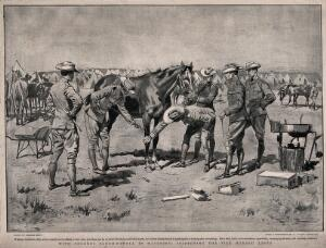 view Boer War: Colonel Baden-Powell inspecting a sick horse at a military camp in Mafeking. Halftone after G. Scott after D. Taylor.