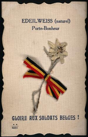 view A postcard with a pressed sprig of Edeilweiss and ribbon of Belgium flag, saluting the Belgium soldiers. Pressed flower on card.