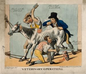 view Three veterinary surgeons attempting to cure a horse of various ailments, using dubious and violent means. Coloured etching by Giles Grinagain, 1800/1815?