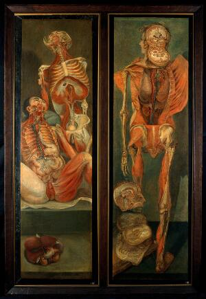 view Two anatomical oil paintings by d'Agoty, 1765-1765