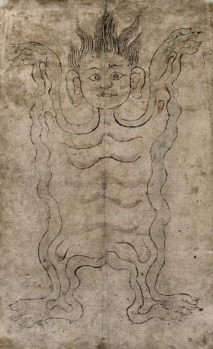 view The skin of an écorché. Ink drawing, Tibet.