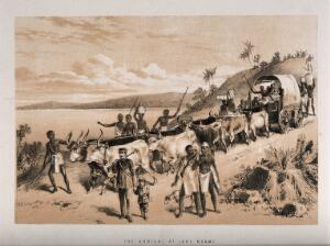 view David Livingstone arriving at Lake Ngami in 1849. Lithograph.