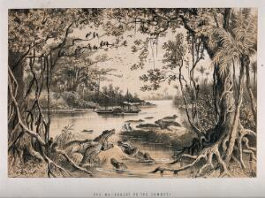 view David Livingstone's steamboat, the Ma-Robert, on the Zambezi River; crocodiles in the foreground. Lithograph.