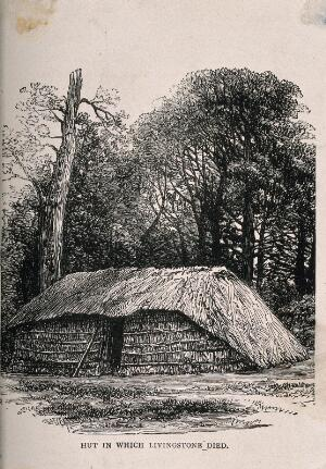 view The hut where David Livingstone died, in central Africa. Etching.
