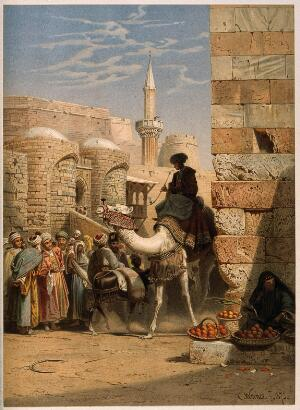 view Egypt: a street with a man smoking and riding a camel. Chromolithograph after C. F. H. Werner, 1873.