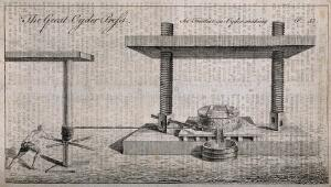 view A man winding a large cider press. Engraving, late 18th century (?).