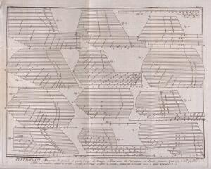 view Patterns for wigs. Engraving by R. Bénard after J.R. Lucotte, 1762.