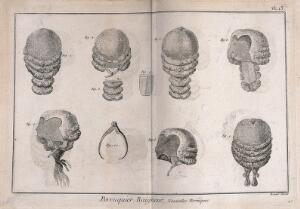 view Various styles of wigs. Engraving by R. Bénard.