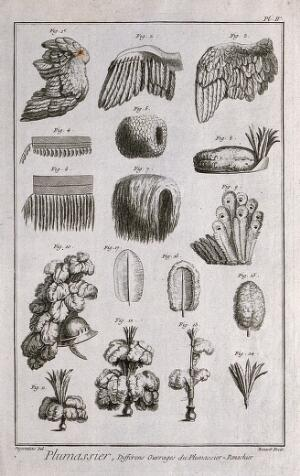 view Various feather accessories for wigs and hair. Engraving by R. Bénard after Degerantins.
