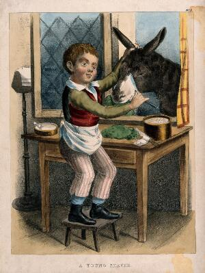 view A small boy shaving a donkey. Coloured lithograph.