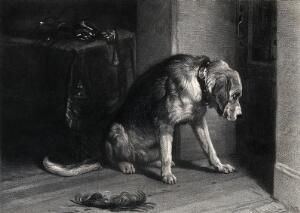 view A bloodhound with a heavy collar is looking intently towards a heavy door. Half tone after an oil painting by E. H. Landseer.