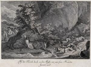 view A stag is chased by four dogs through a river with three mounted huntsmen in the background. Etching by J.E. Ridinger.