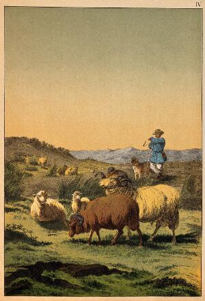 view A shepherd and his sheepdog guarding his flock which entails two curly-horned rams. Colour line block.