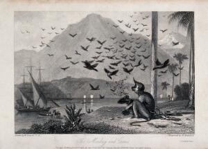 view A chained monkey being bombarded by a flock of crows as people arrive on it's land. Engraving by R Brandard, ca 1835, after W Daniell.