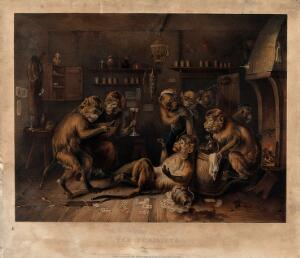 view Debauched monkeys revelling in a dingy tavern as two have a boxing match. Coloured lithograph by T. Fairland after E. Bristow.