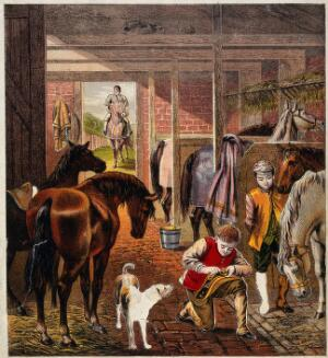 view A stable where young stablemates take care of the horses and their headgear and bridle. Colour line block with paper cutouts.