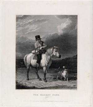 view A young man with a black top hat is riding a pony and holding a basket with fruit and fowl. Etching with line engraving by W. R. Smith after T. Woodward.