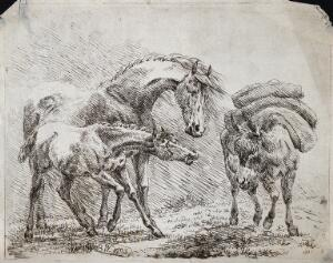 view A horse and its foal are looking at a pack-mule. Etching by B. W.