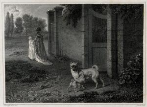 view A small and a large pug are standing outside the gate of a walled garden. Etching by J. Scott after P. Reinagle.