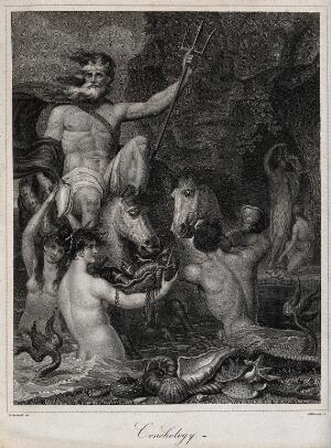 view Neptune surrounded by Triton and sea-nymphs is presented with the fruits of the sea; representing conchology. Stipple engraving by J. Chapman after R. Corbould.