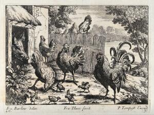 view A cockerel with hens and chicks looking for food outside a pig sty. Engraving by P. Tempest, ca. 1690, after F. Barlow.