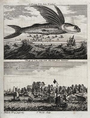 view Above, a flying fish hovering over the sea; below, a Chinese village sea-port. Etching by J. Wood.