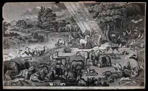 view Adam names the animals in the Garden of Eden. Etching.
