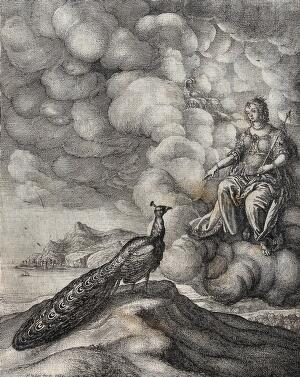 "view Juno is seated on the clouds and addresses a peacock standing on a mound; illustration of Ogilby's ""Aesopicks"". Etching by W. Hollar."