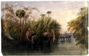 view Elephants drinking in a river in Sri Lanka, with men in turbans seated upon their backs. Watercolour by A. Nicholl, 18--.