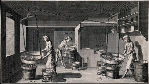 view Confectioner's shop: interior view, process of smoothing sugar-plums. Etching.