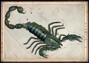 view Astrology: signs of the zodiac, Scorpio. Coloured engraving.