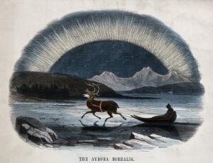view Astronomy: the Aurora Borealis, with a reindeer-drawn sledge in the foreground. Coloured wood engraving by C. Whymper.