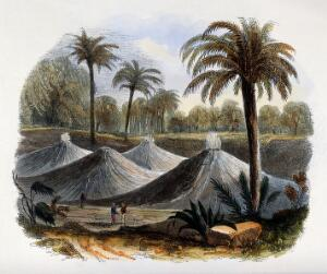 view Geography: mounds of volcanic dust. Coloured wood engraving by C. Whymper.