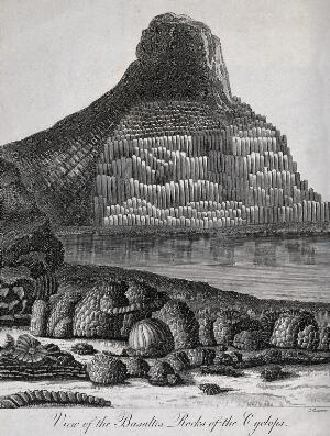 view Geology: an outcrop of basalt columns by the sea. Engraving by J. Chapman.