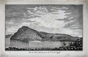 "view Island of ""Boo-Sha-La"", near Staffa, Scotland: columns of basalt covering the island. Etching by G. Riboldi."