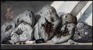view Stones or crystals from Mount Vesuvius. Coloured etching by Pietro Fabris, 1776.