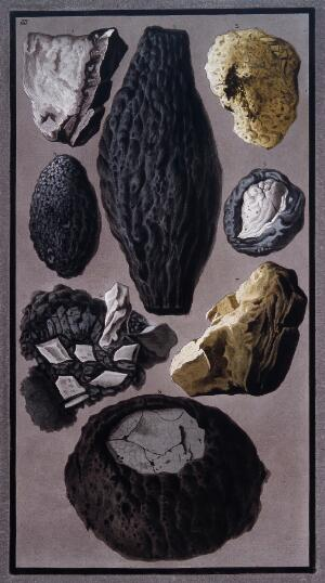 view Pieces of lava and vitrified, flinty matter found after the eruption of Mount Vesuvius on 8 August 1779. Coloured etching by Pietro Fabris, 1779.